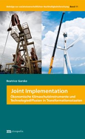 Joint Implementation